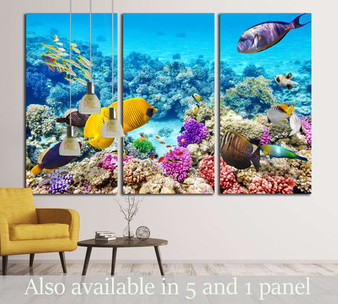 Wonderful and beautiful underwater world with corals and tropical fish №3066 Ready to Hang Canvas Print