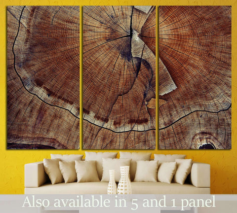 Wood cut texture №648 Ready to Hang Canvas Print