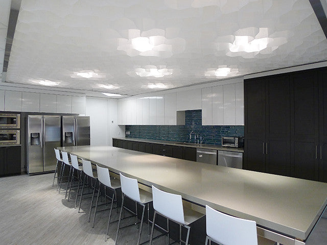 PCI_HONEYCOMB_CEILING_2013_CANADA_Lunchroom