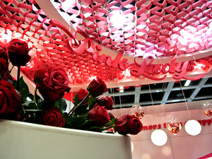 PCI_HONEYCOMB_CEILING_2012_PINKLADY