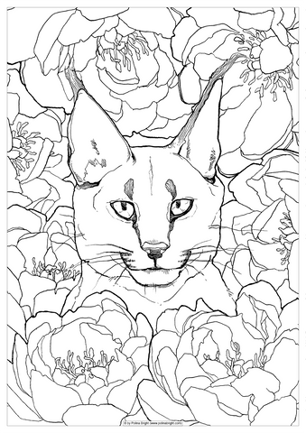 Caracal cat in peonies