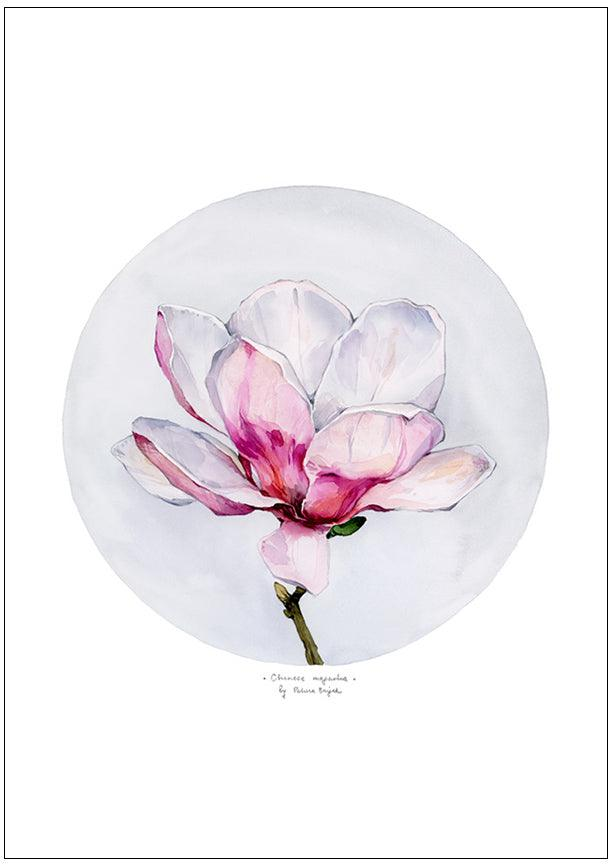 Load image into Gallery viewer, Chinese Magnolia