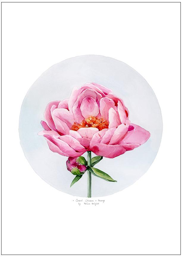 Load image into Gallery viewer, Coral Charm Peony