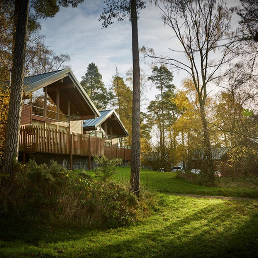 Win £400 Off a Luxury Family Break With Forest Holidays and Gigi Brooks