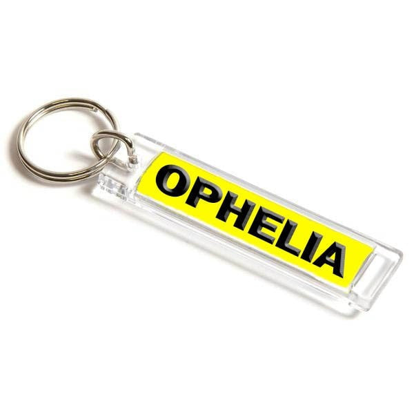 Personalised Number Plate Keyring 53mm x 10mm