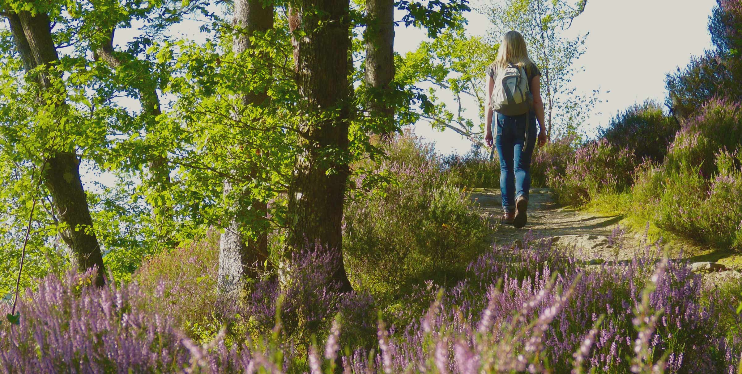 Image of woman walking through the heather in woodland