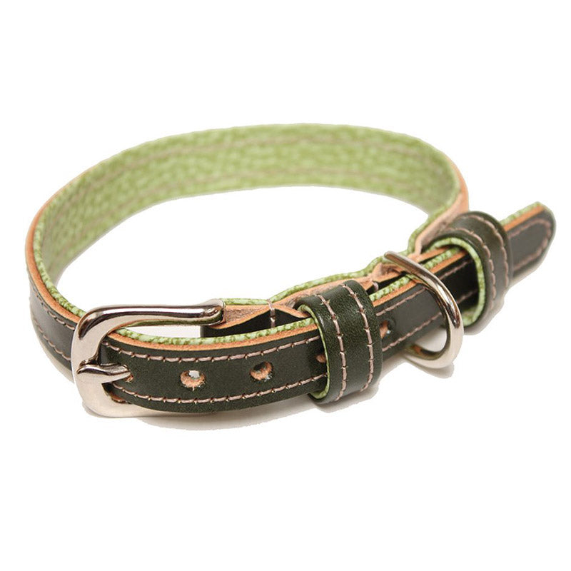Green And Lime Leather Dog Collar