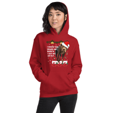 I Know You Heard Me Dog Hoodie - Helluva Vibe Apparel