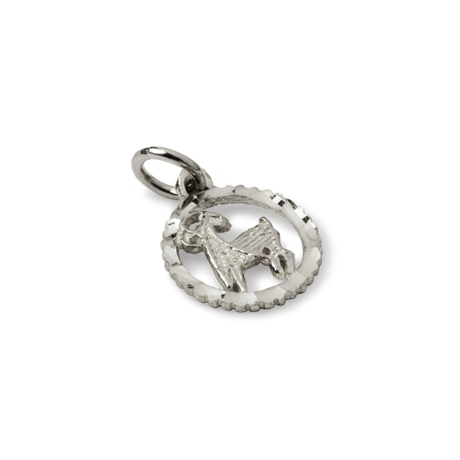 Shirley Horoscope Charm