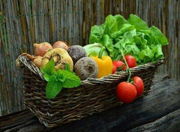 Why Growing Your Own Organic Vegetable Garden is a Great Benefit