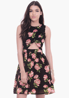 Peek-a-Boo Floral Skater Dress