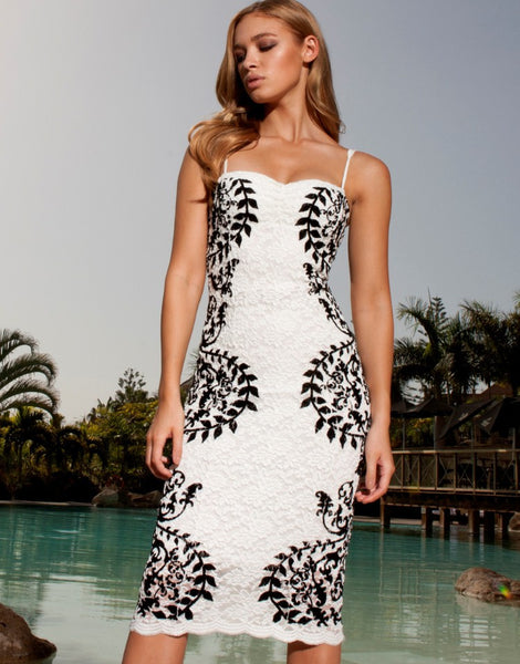 VS Fashions Print Lace Pencil Dress
