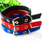 Cotton Nylon Pet Collar 5 sizes 4 colors