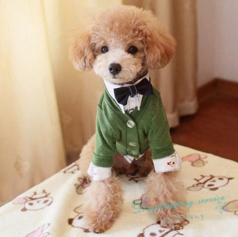Cardigan Dog Shirt 6 colors