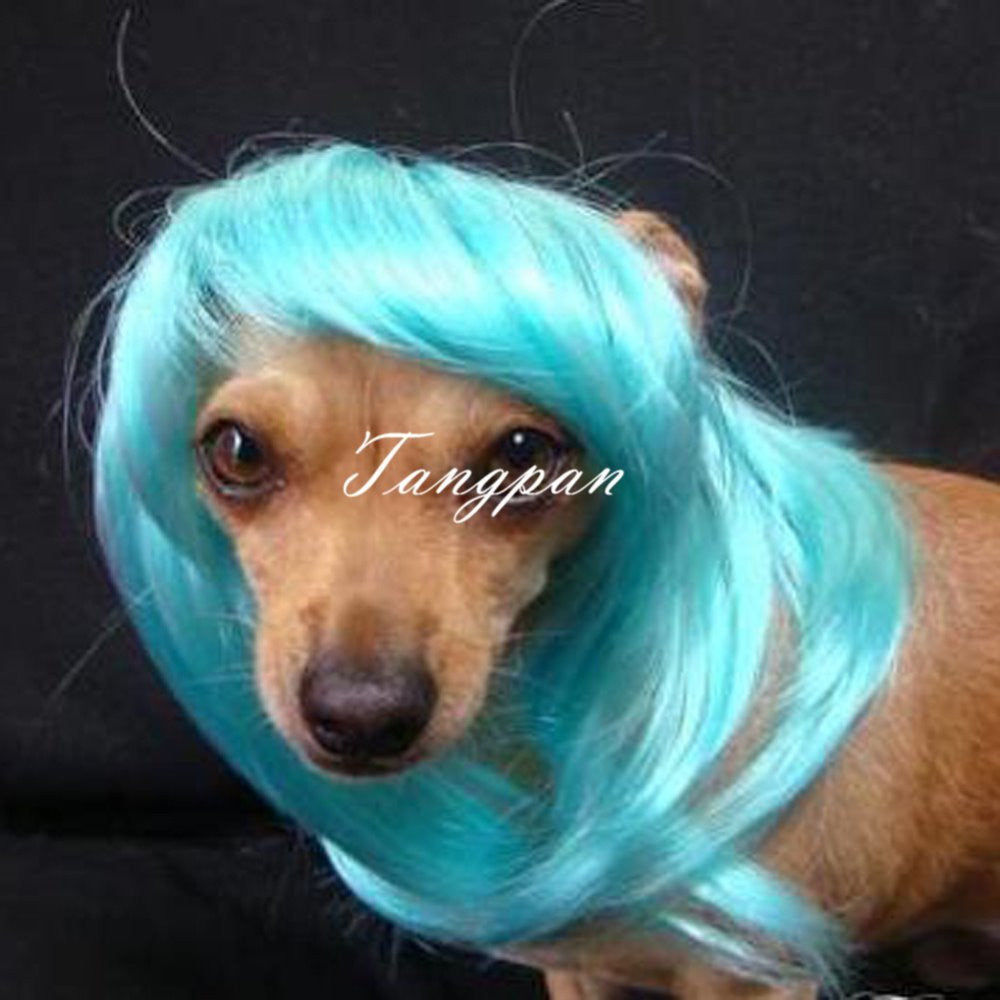 Hot Blue Long Wavy Dog Wig