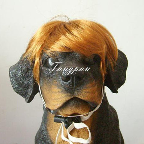 Golden-yellow Short Dog Wig