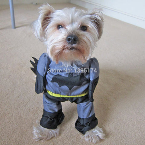 Batdog or Batman Superhero Outfit