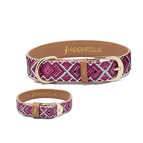 Dog Collar & Matching Friendship Bracelet Set