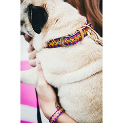 FriendshipCollar Dotty About You Dog Collar & Matching Friendship Bracelet Set - Vegan Leather