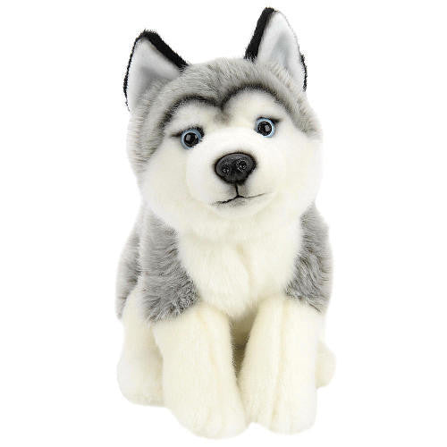 Toys R Us Plush 10 inch Husky - Gray and White