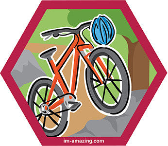 mountain bike and helmetwith boulder in woods on hexagon magnet