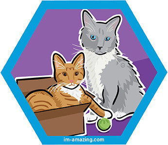 Ginger kitten in cardboard box and Siamese cat on hexagon magnet, I'm amazing magnetic personality