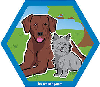 small gray terrier and large brown dog on hexagon magnet, I'm amazing magnetic personality