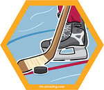 hockey pucks, stick and skate on hexagon magnet, I'm amazing magnetic personality