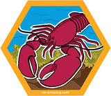 Maine lobster on rocks and seaweed on hexagon magnet