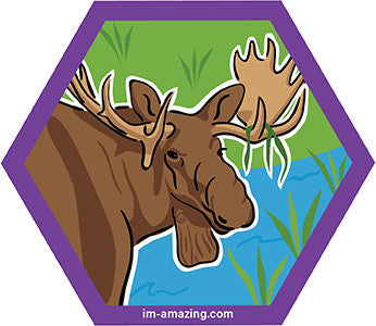 bull moose in pond on hexagon magnet