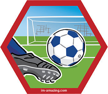 soccer ball, cleat kicking and net on hexagon magnet