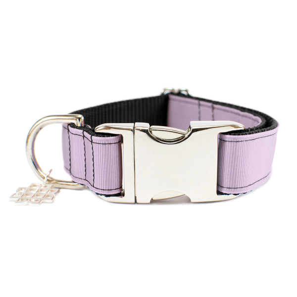 Catmint Purple Collar