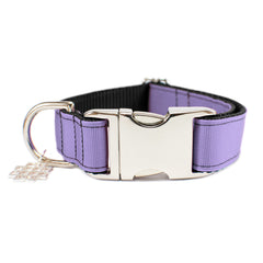 Lilac Purple Collar