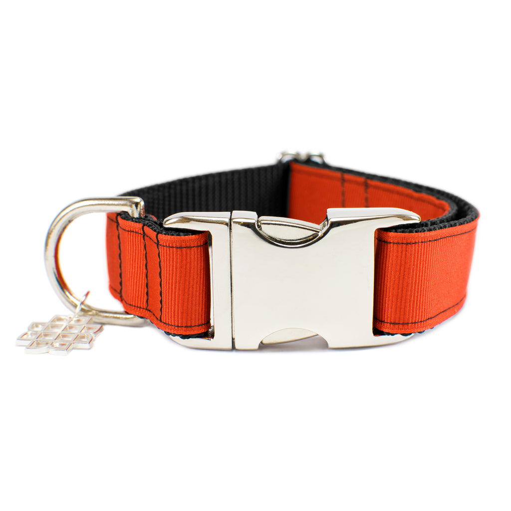 Mango Orange Collar