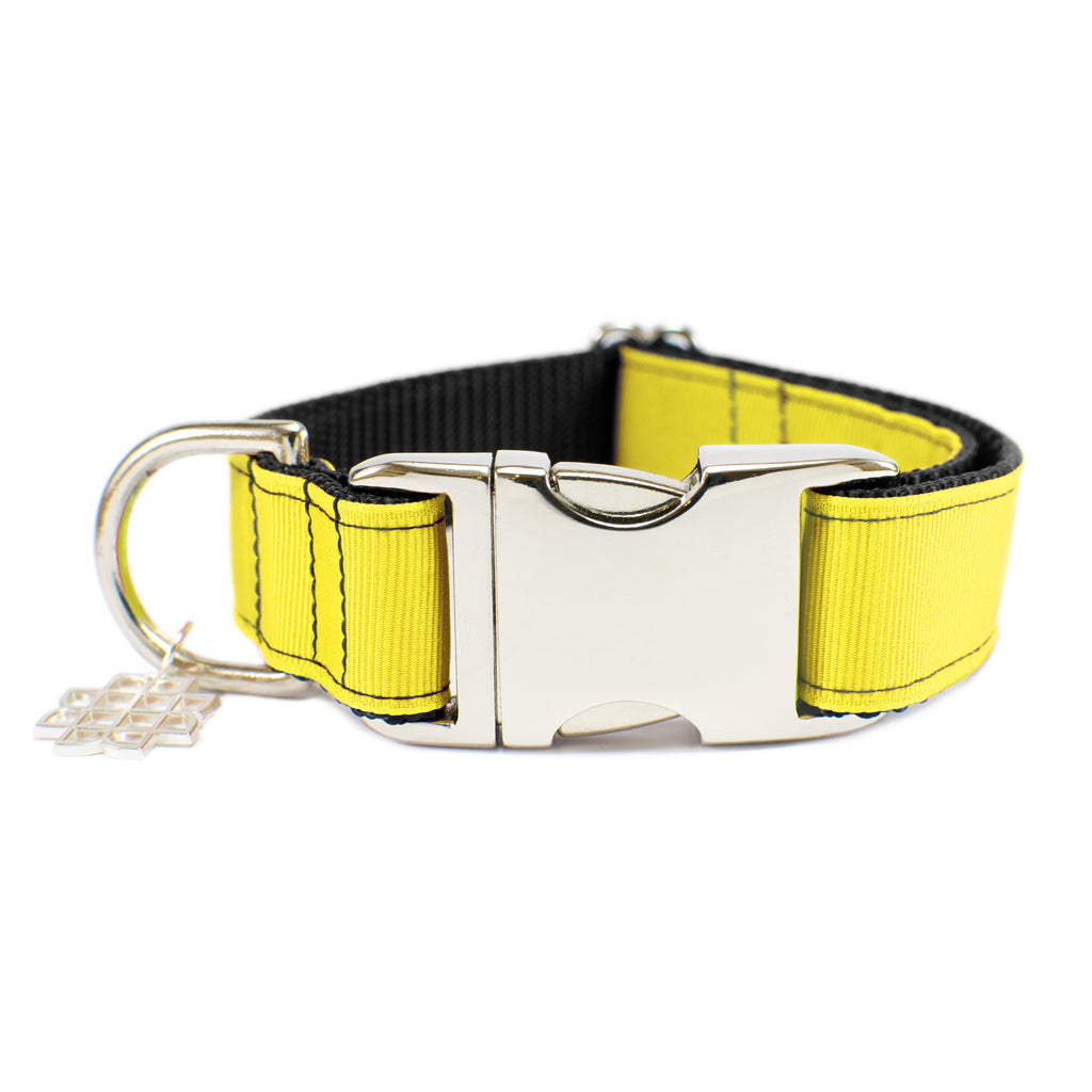 Pomelo Yellow Collar