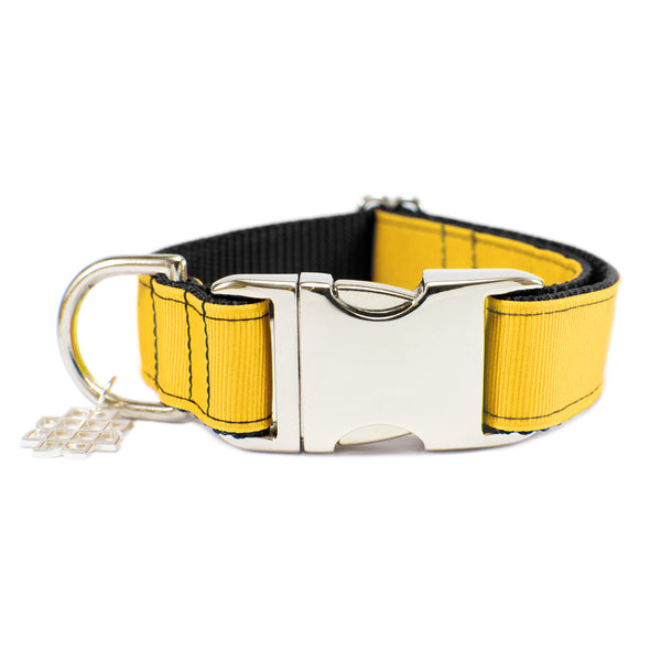 Turmeric Yellow Collar
