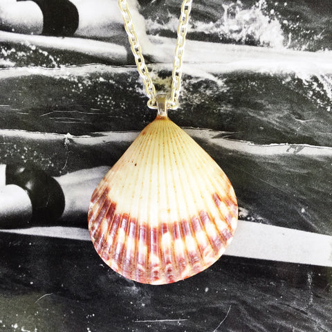 Sunrise Shell Necklaces| Hand-made in Hawaii| - Honorooroo Lifestyle