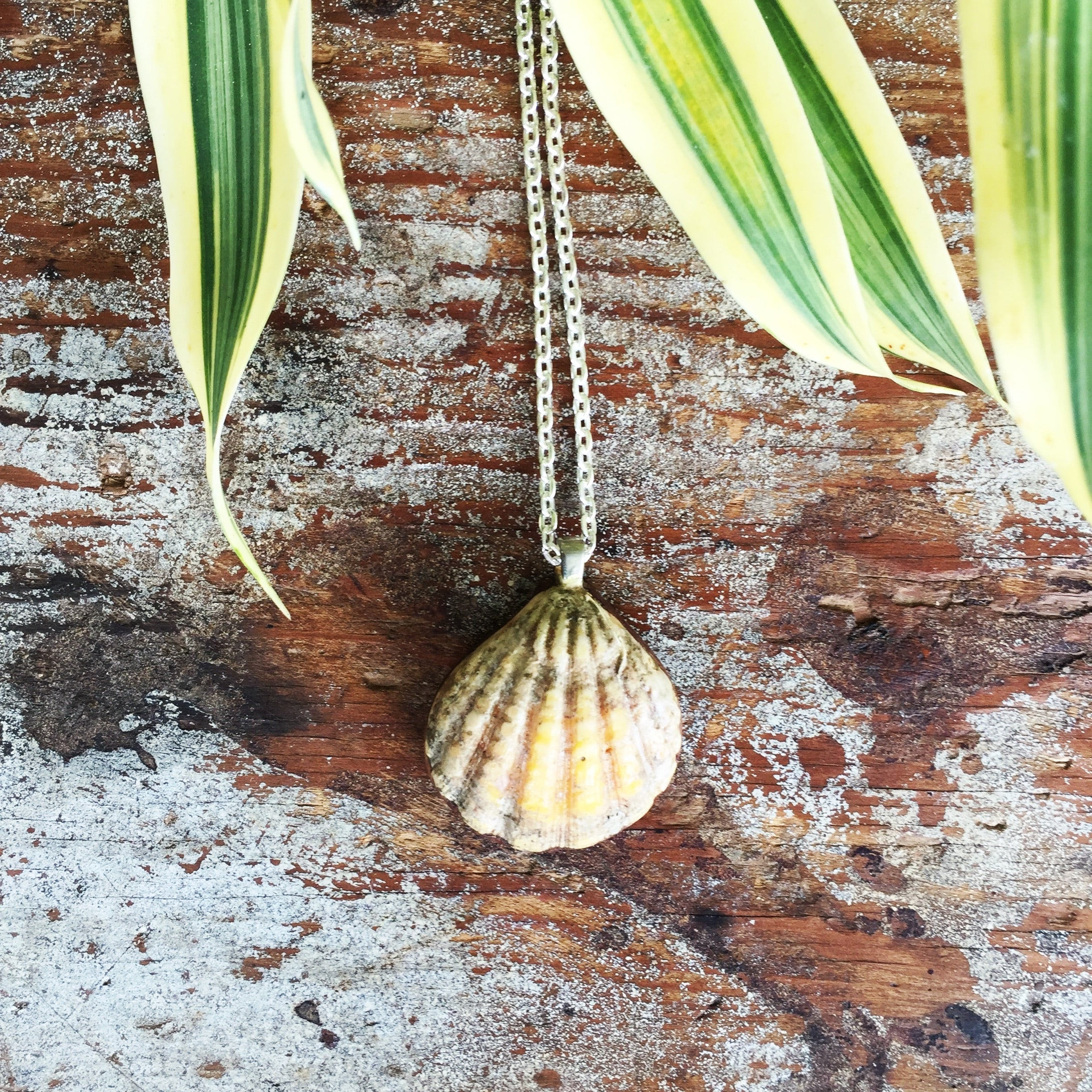 Sunrise Shell Necklaces| Hawaiian Sunrise/Moonrise Shell pendants| Beach Jewelry - Honorooroo Lifestyle