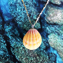 Hawaiian Sunrise/Moonrise Shell pendants|Beach Jewelry|4 - Honorooroo Lifestyle