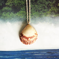 Sunrise Shell Necklaces| Hand-made in Hawaii|6 - Honorooroo Lifestyle