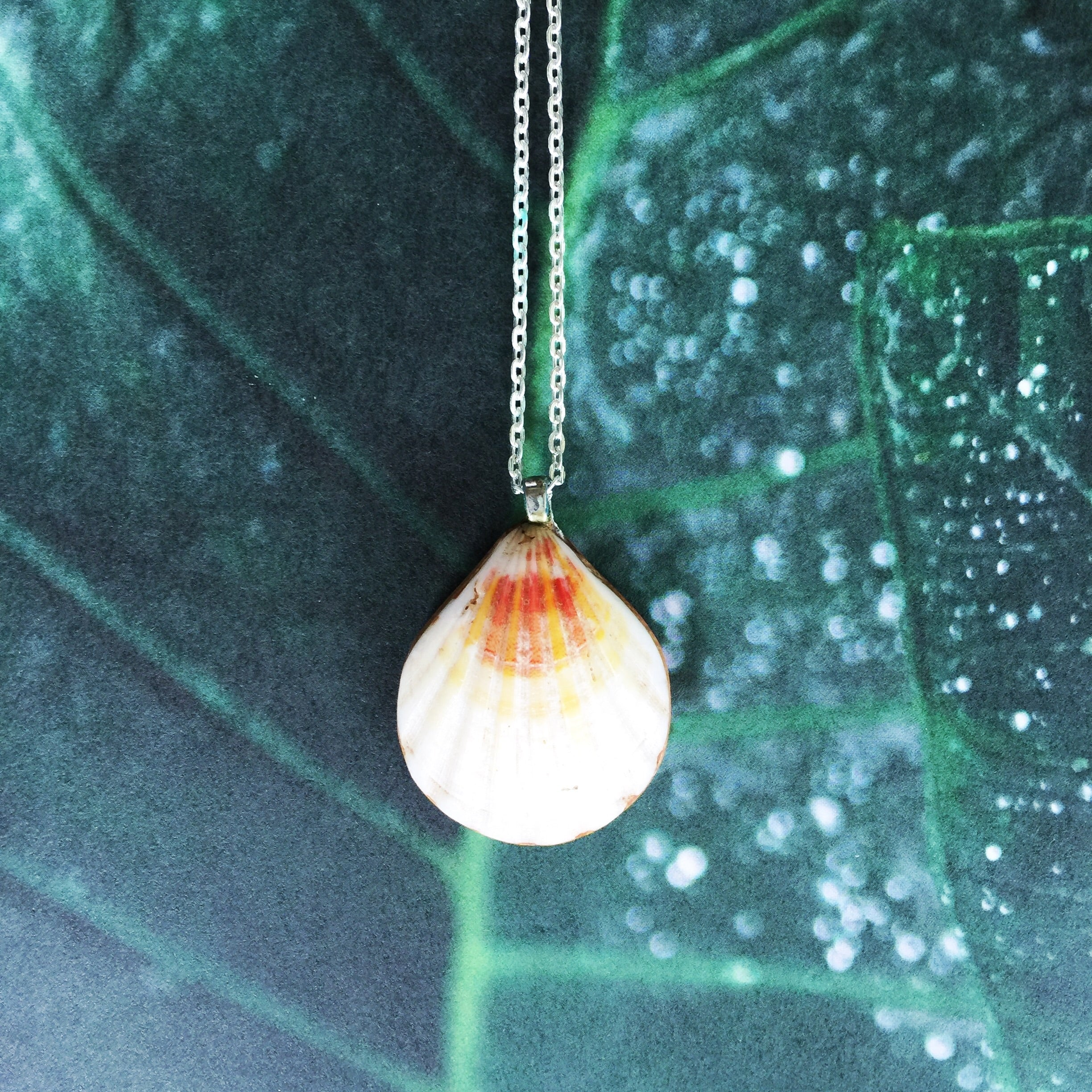 Sunrise Shell Necklaces| Hawaiian Sunrise/Moonrise Shell pendants| Beach Jewelry|20 - Honorooroo Lifestyle