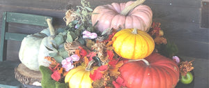 It's Fall at Greene Acres!
