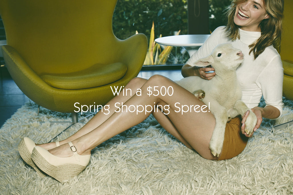 Enter to Win a $500 Spring Shopping Spree