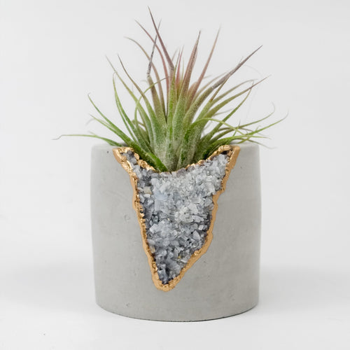Blue Calcite Shooter Planter - Love & Light Jewels