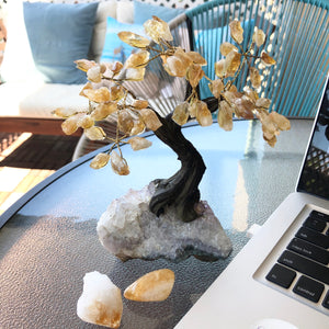 Citrine Bonsai Tree - Love & Light Jewels