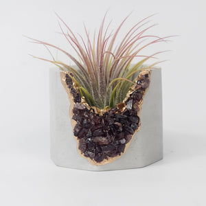 Gemstone Geode Planter - Love & Light Jewels