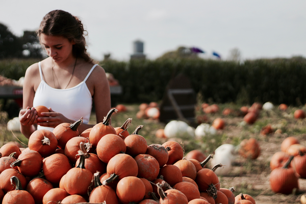 Top Reasons Why Pumpkin Is Great For Your Skin