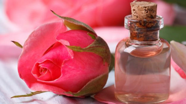 Rose water is derived from rose petals through a process of steam distillation.
