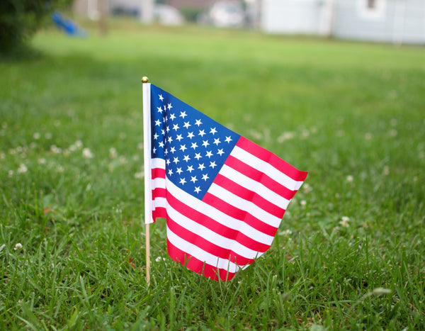 Eco-Friendly Ways to Celebrate the 4th Of July