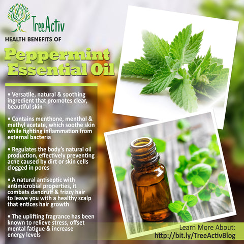 TreeActiv Peppermint Essential Oil Health Benefits